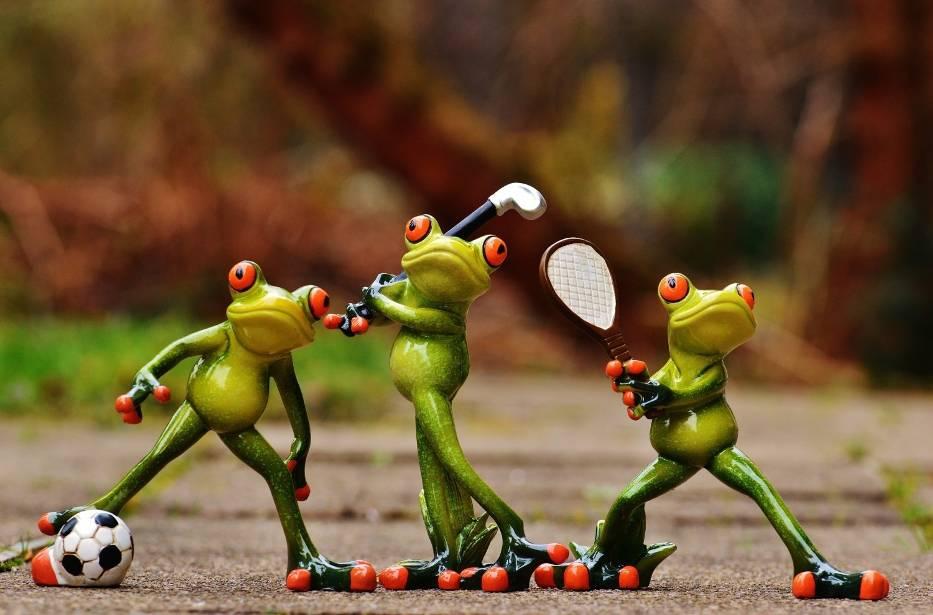 Żaby uprawiające sport - TOP30 sportowych filmików na YT