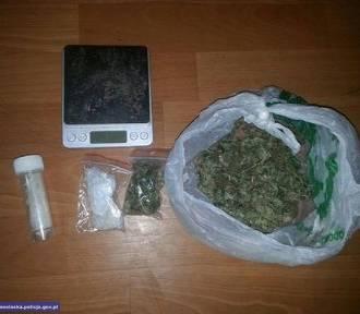 Palili w mieszkaniu marihuanę. Policjanci wyczuli zapach