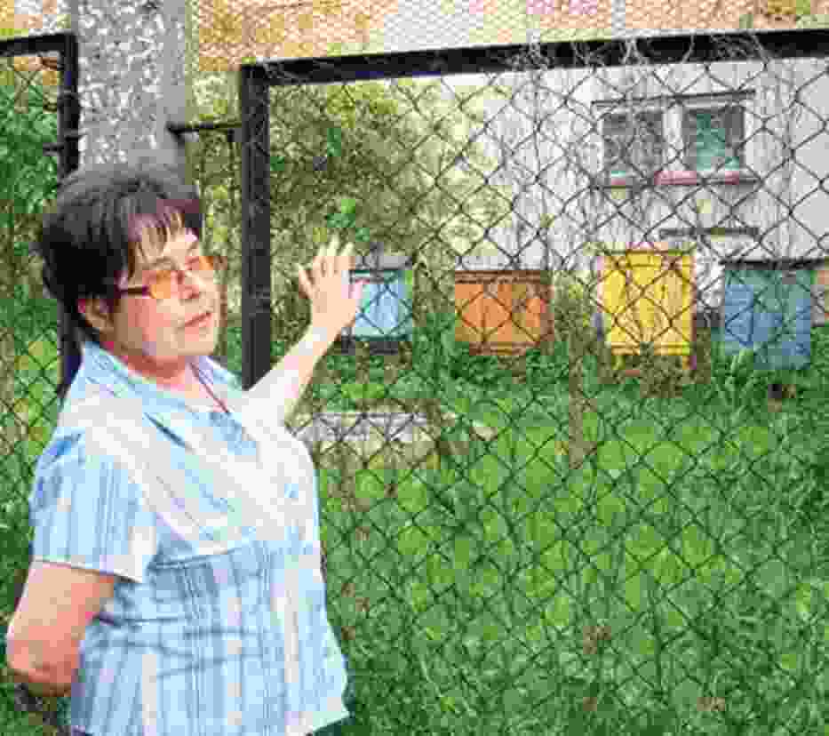 Urszula Seweryn twierdzi, że siatka nie jest wystarczającym zabezpieczeniem przed owadami