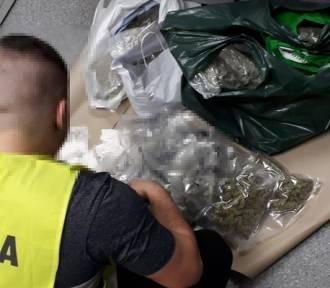 Wejherowo. 19-latek został tymczasowo aresztowany za posiadanie około 6 kg narkotyków |ZDJĘCIA