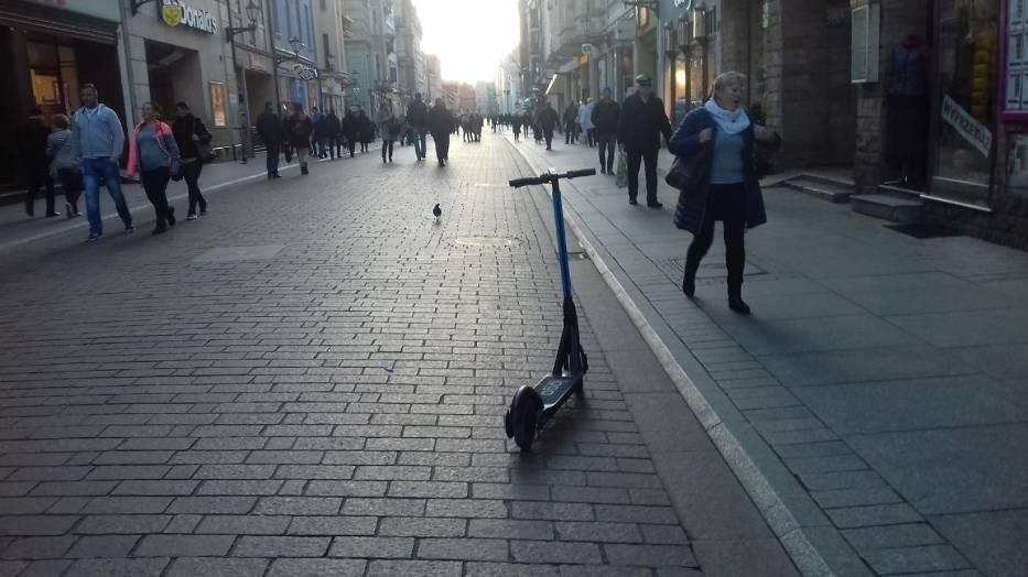 Władze stolicy zaczęły w końcu rekwirować porzucane na chodnikach i ścieżkach e – hulajnogi, w Toruniu Straż Miejska doradza: - Zawsze można przestawić je w inne miejsce