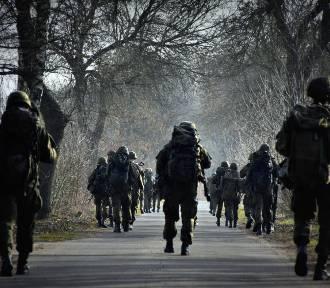 Ćwiczenia w 15. Sieradzkiej Brygadzie Wsparcia Dowodzenia - ZDJĘCIA