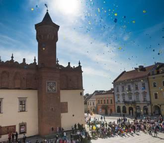 Komunikacja miejska w Tarnowie. Sprawdź rozkłady jazdy tarnowskich autobusów