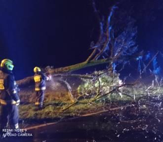 Powalone drzewa, uszkodzone auta i brak prądu. To skutek silnego wiatru i deszczy