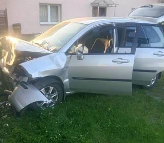Osa wleciała mu do auta, spowodował wypadek [ZDJĘCIA]
