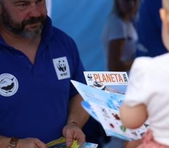 Błękitny Patrol szuka wolontariuszy na Półwyspie Helskim. Chcesz pomóc przyrodzie?