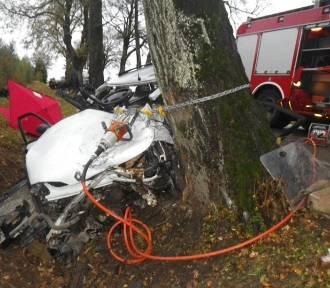 Tragiczny wypadek w miejscowości Trygort. Zginął kierowca [ZDJĘCIA]