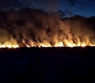 Łuny nocnych pożarów w dolinach Popradu i Dunajca. Trudne akcje strażaków