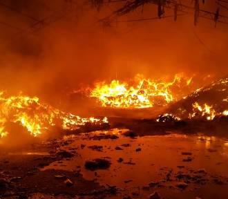 Żorscy strażacy podsumowali akcję gaszenia składowiska opon ZDJĘCIA
