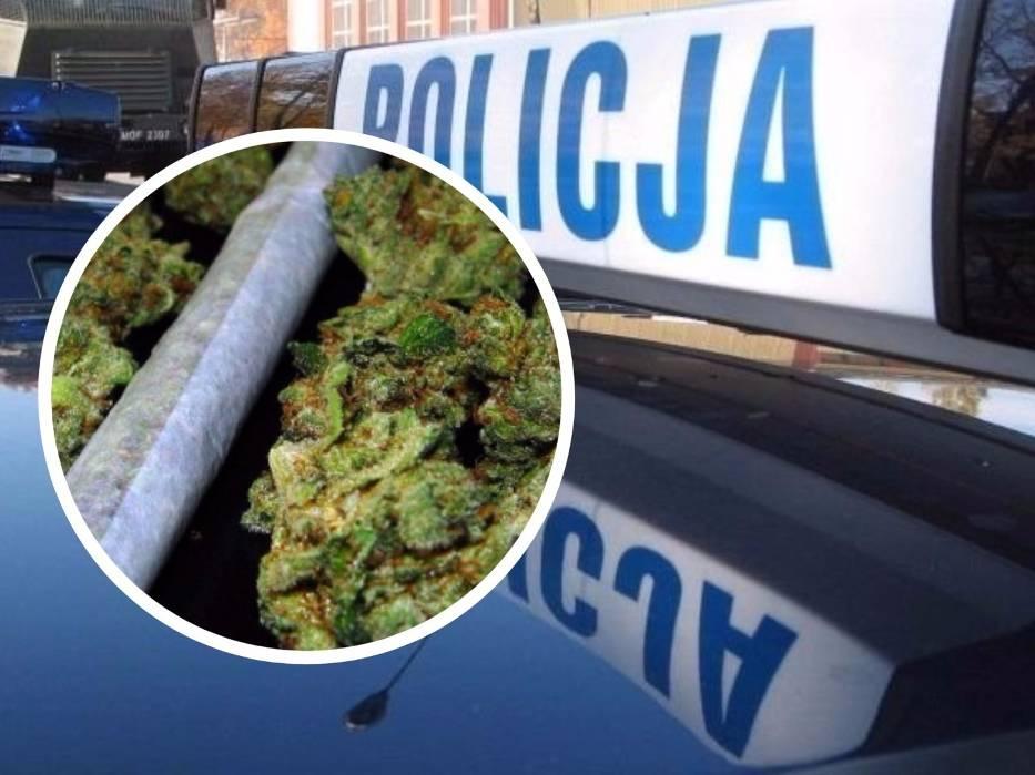 Policjanci z bydgoskiego oddziału prewencji zatrzymali trzy osoby podejrzane o posiadanie marihuany