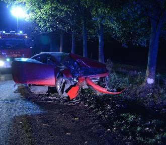 W Szynwałdzie kierowca uderzył w drzewo. Jechał, mając prawie 5 promili! [zdjęcia]