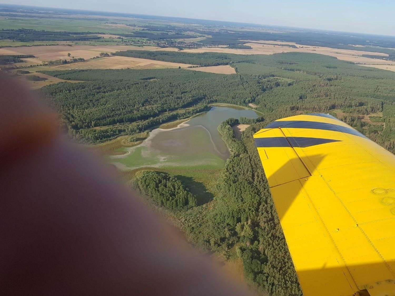 Na zdjęciu widoczne jest znikające Jezioro Żabiniec