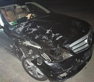 Jeleń nie przeżył zderzenia z mercedesem w podsądeckiej wsi