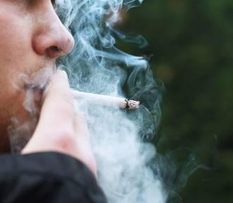Światowy Dzień Rzucania Palenia. Jak walczyć z tym nałogiem? [zobacz wideo]