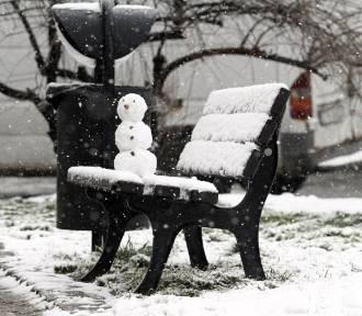 Czy święta będą białe? Przeczytaj, jaka będzie pogoda na Boże Narodzenie