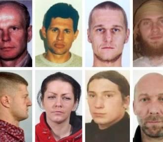 23 bandytów, których szuka Interpol i polskie sądy [MIĘDZYNARODOWE LISTY GOŃCZE]
