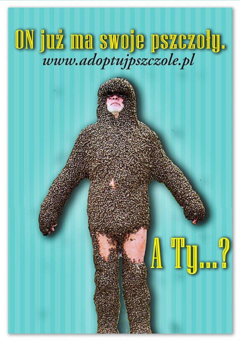 Adoptuj Pszczołę za 2 zł - crowdfunding Greenpeace