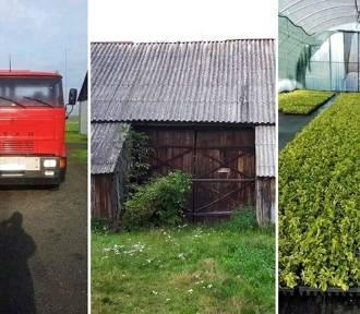 Lubelskie: Najtańsze rzeczy do kupienia na Olx.pl. Oferty za złotówkę! Sprawdź