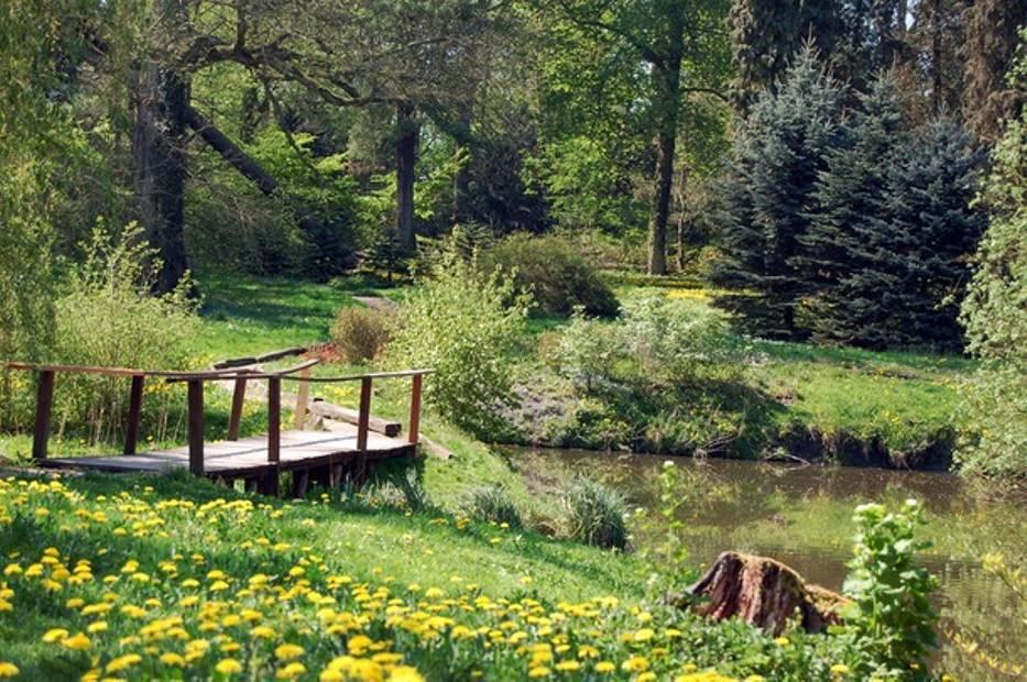 Ogród Dendrologiczny w Przelewicach to niezwykłe spotkania z przyrodą
