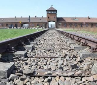 Irlandczyk skazany za wyrycie swojego imienia w Auschwitz