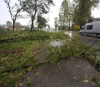IMGW ostrzega: silny wiatr w całym regionie