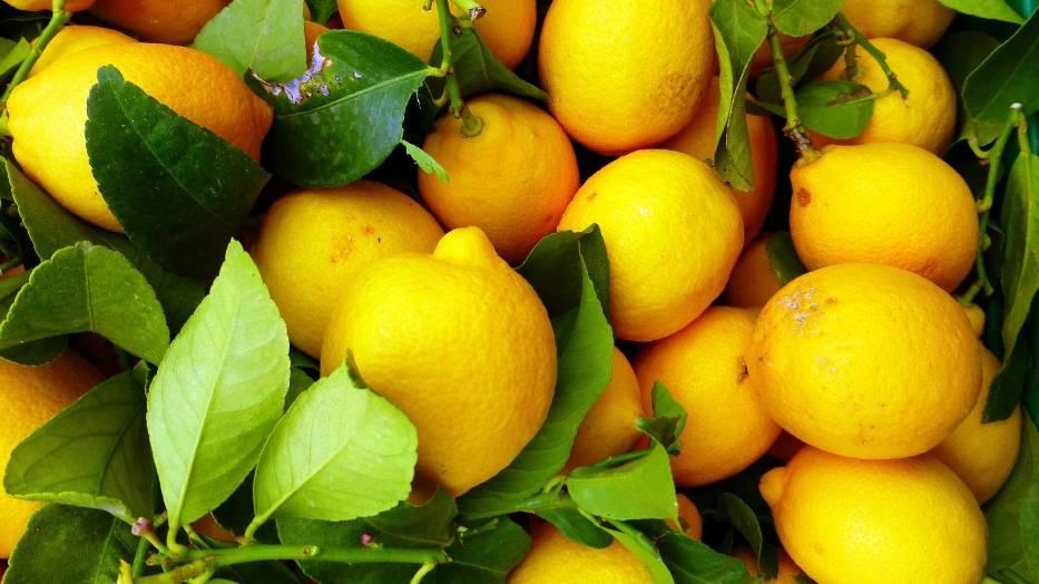 CYTRYNAZestaw związków zapachowych zawartych w skórce cytryny poprawia humor i samopoczucie