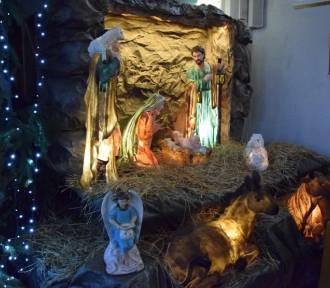 Szopka bożonarodzeniowa w pruszczańskim kościele MBNP [ZDJĘCIA]