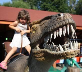 TOP 15 najlepszych atrakcji dla rodzin z dziećmi w Polsce