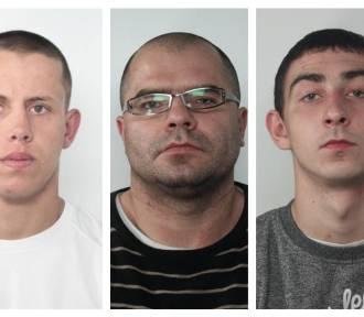 Oto osoby poszukiwane w naszym regionie za kradzieże z włamaniem [zdjęcia]