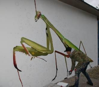 Mgr Mors maluje w Gorlicach kolejne owady. Dzisiaj powstała modliszka