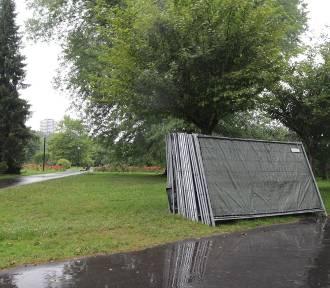 Park Śląski po Fest Festivalu. Zniknęły śmieci i sceniczne konstrukcje