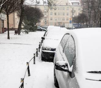 Czy w końcu spadnie śnieg w Warszawie? Czy ferie będą białe?