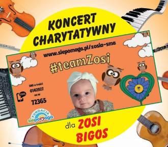 Akcje i pikniki dla Zosi Bigos w Tomaszowie i regionie [ZDJĘCIA]