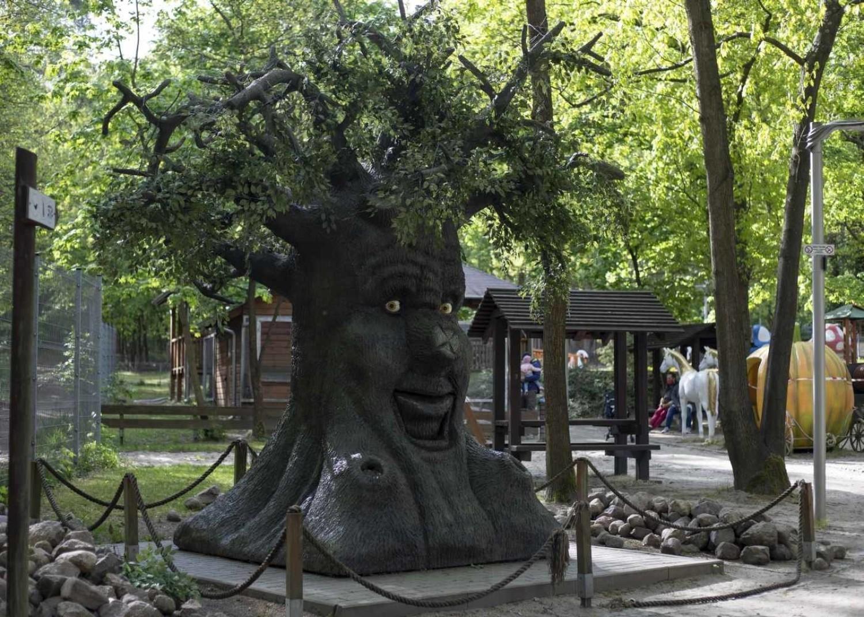 Ogród Botaniczny i Mini Zoo w Zielonej Górze ponownie otwarte dla zwiedzających