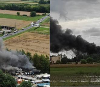 Duży pożar złomowiska autobusów pod Włocławkiem [zdjęcia]