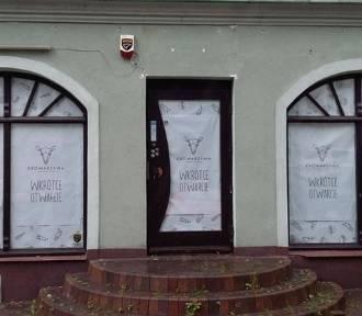 Otwarcie restauracji Krowarzywa w Gdańsku