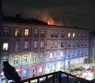 Pożar w kamienicy w Chorzowie. Płonęło poddasze