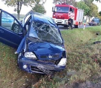 Ku przestrodze! Wypadki na drogach Lubelszczyzny w mijającym tygodniu [GALERIA]