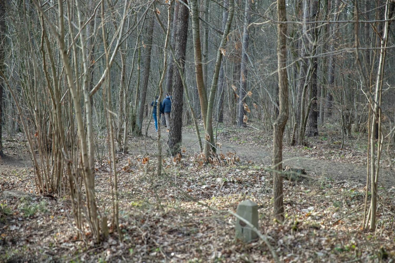 Zobacz białostockie lasy w naszej galerii