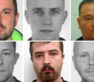 Złodzieje z Małopolski poszukiwani przez policję