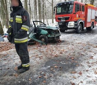 Samochód uderzył w drzewo, kierowca ciężko ranny
