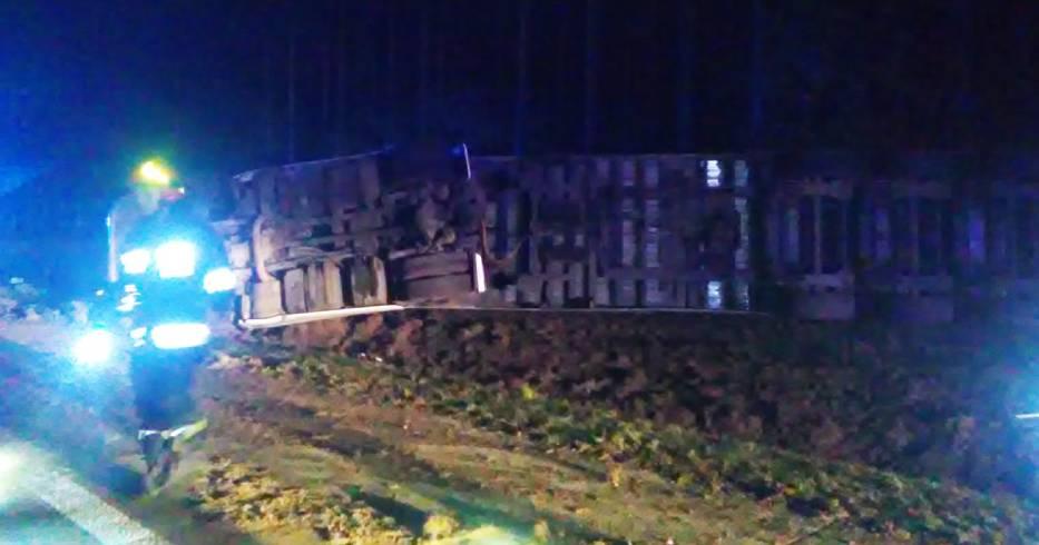 Ciężarówka Z Drewnem Wypadła Z Drogi Koło Olszyny Zdjęcia