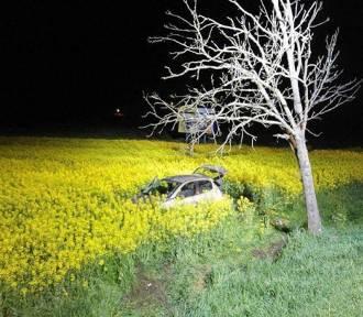 Wypadek w Miłobądzu. Dwie osoby ranne po zderzeniu auta z sarną [ZDJĘCIA]