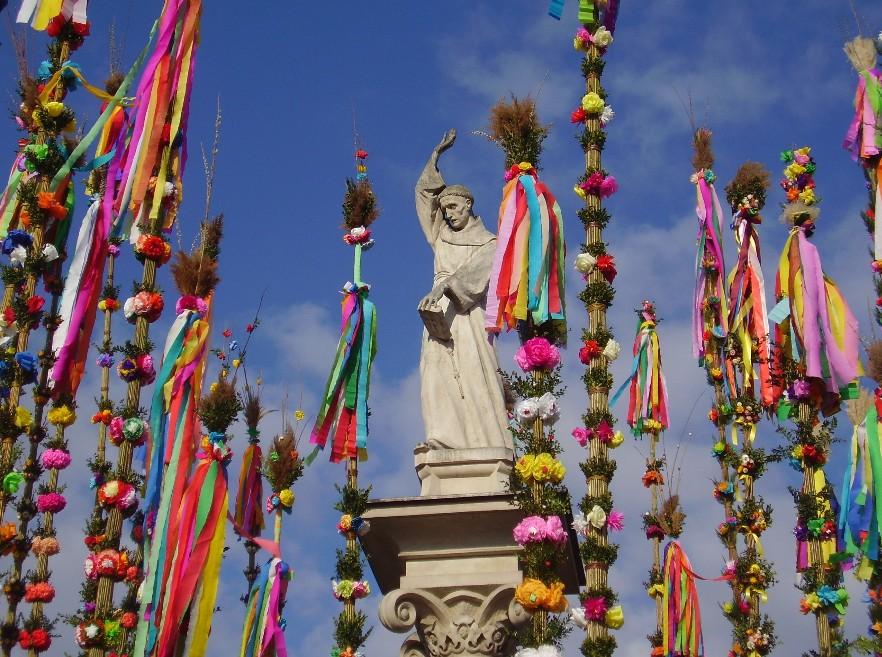 Lipnickie palmy zdobią Rynek i pomnik św