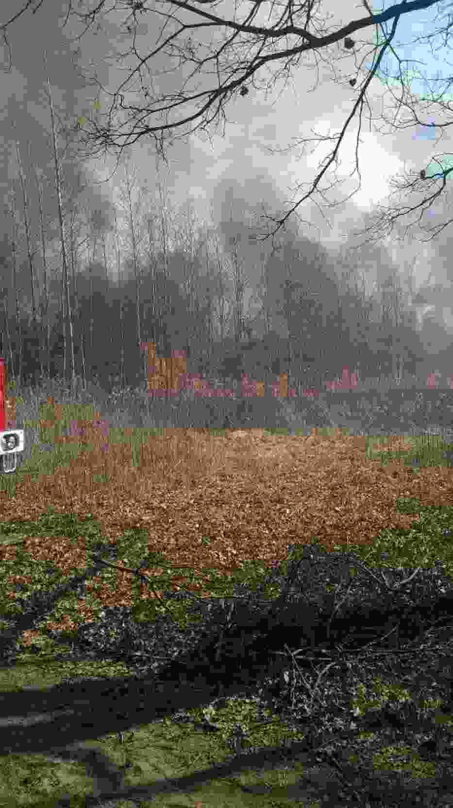 Pożar nieużytków w Opolu Lubelskim