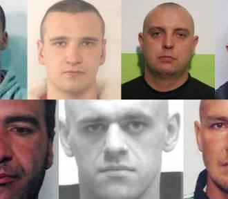 Policja w Wielkopolsce poszukuje tych przestępców! Widziałeś ich? FOTO