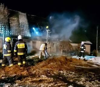 Pożar budynku połączonego z domem w Nieżywięciu. Zobaczcie zdjęcia
