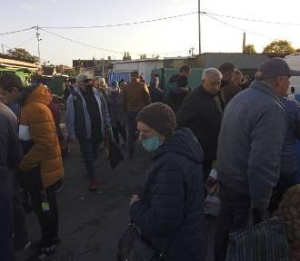 Aktualne ceny na targu przy ul. Owocowej. Ile zapłacimy za świeże warzywa i owoce?