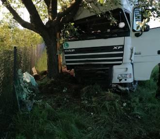 Samochód ciężarowy wjechał do rowu i uderzył w drzewo