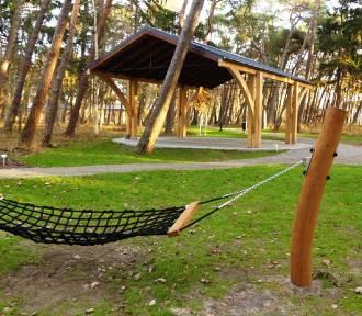 Zakończono projekt Zielone Darłowo -  w Darłówku Zachodnim utworzono nowy park [ZDJĘCIA]
